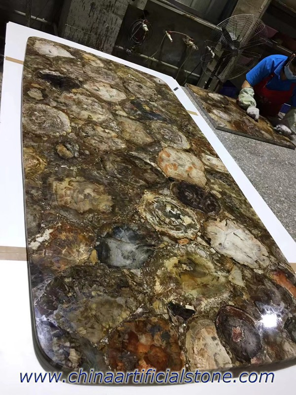 Petrified Wood Dining Table TopS